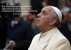 Franciszek 6