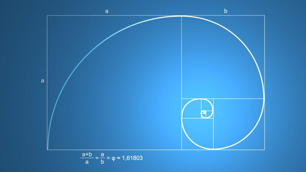 299-zlota-spirala-zloty-podzial